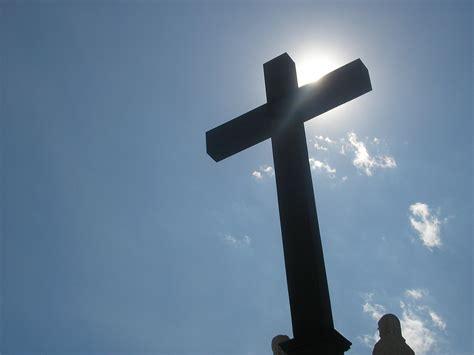 cross cross cross and night a solitary bird