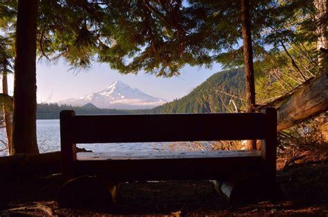 bench lake bench by the lake lost lake resort