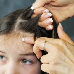 7 lice home remedies treatments cures search