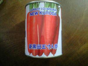 Toko Bibit Wortel wortel new kuroda toko tani subur