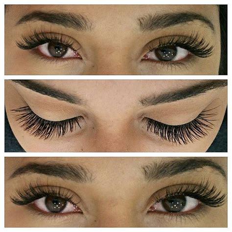 Lash For Eyelash Extension 71 best eyelash extensions images on eyelash