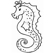 Seahorse Coloring Pages  Free Printable Pictures For