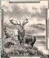minnesota knitting mills west duluth knitting mill caribou vignette minnesota 1916
