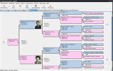 genealogy tree template freeware blank family tree template excel