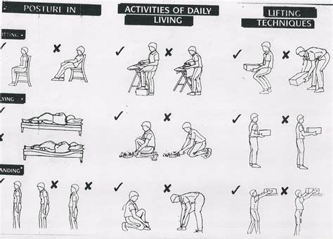 20 best images about exercises for back on primary care lower backs and