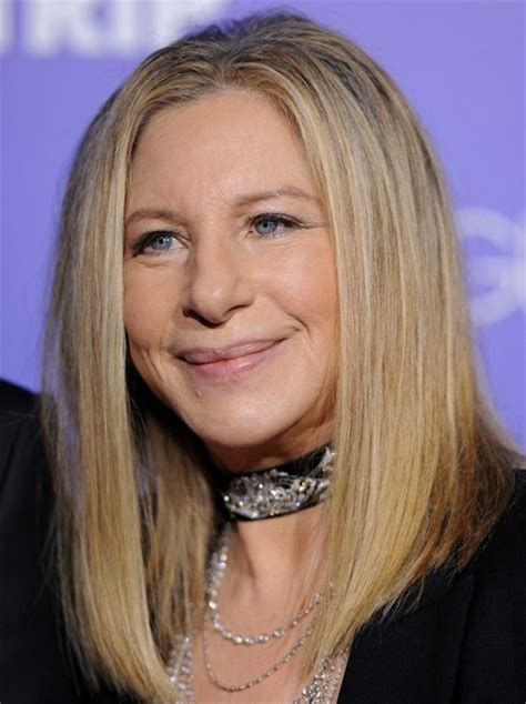barbara streisand hair in guilt trip barbara streisand hair in the guilt trip pictures