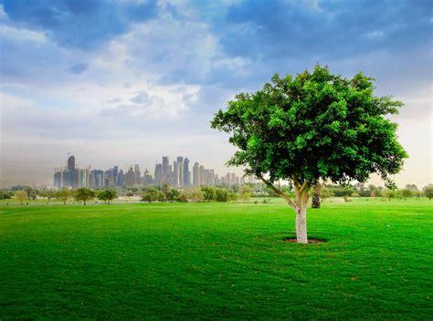 park corniche al bidda park corniche doha qatar doha qatar