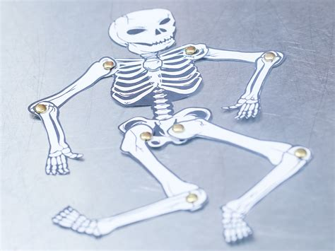 How To Make A Paper Skeleton - how to make a human skeleton out of paper 12 steps