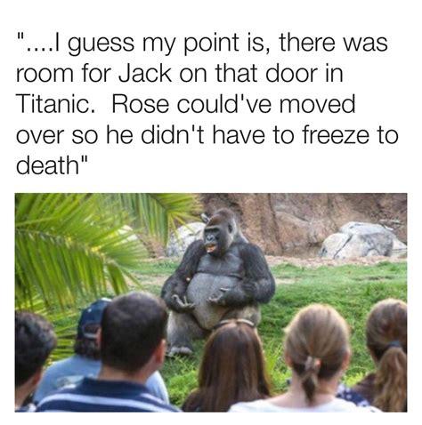 gorilla meme the best gorilla memes memedroid