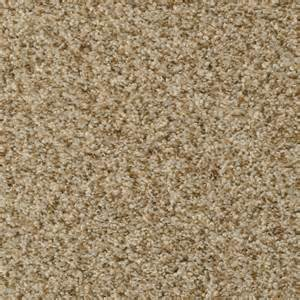 stainmaster carpet colors shop stainmaster active family on broadway pebble