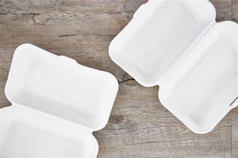 contenitori polistirolo per alimenti perch 233 mettere il cibo nei contenitori di alimenti in