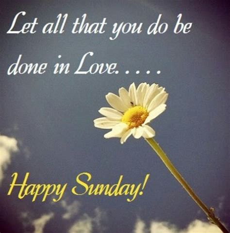 let all that you do be done in love tattoo let all that you do be done in happy sunday