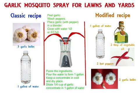 homemade mosquito yard spray is cheap effective and easy