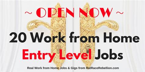 20 work from home entry level open now real work