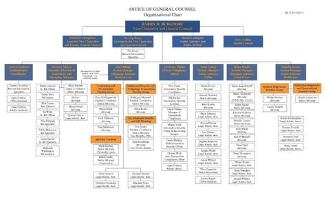 Organization Chart Template Excel by Best Photos Of Microsoft Word Organizational Chart