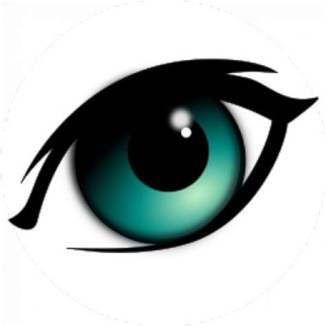 Imagenes Sensoriales Visuales Concepto | definici 243 n de percepci 243 n visual qu 233 es y concepto