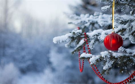 wallpaper for windows 8 christmas windows themes and wallpapers both old friends and new
