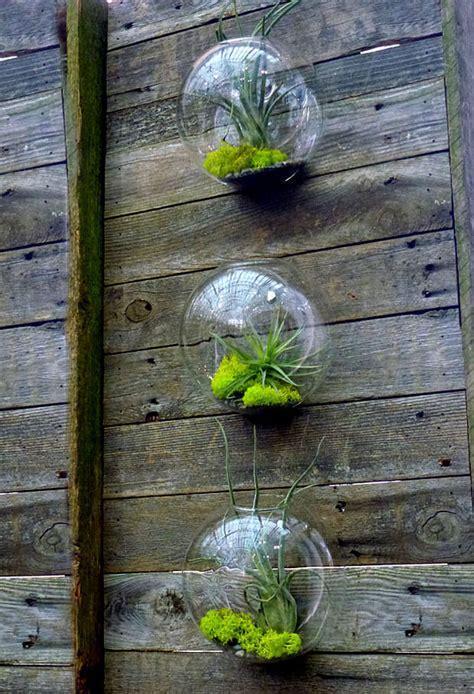 Indoor Container Herb Garden - diy terrariums easy the garden glove
