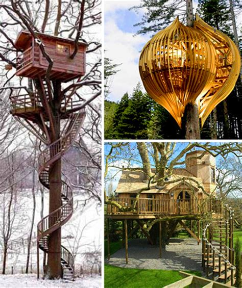 tree houses for sale real tree houses for sale design of your house its good idea for your life