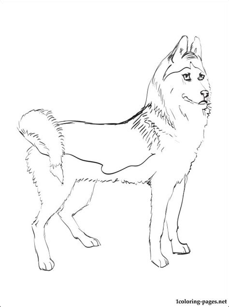 Free Husky Puppy Coloring Pages Siberian Husky Coloring Pages