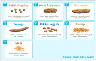 bristol stool chart meaning images