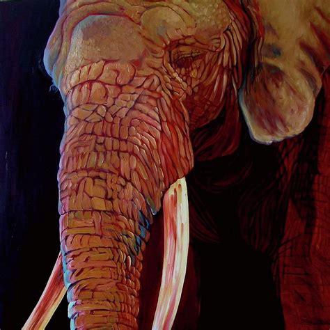 elephant ears by mcneil