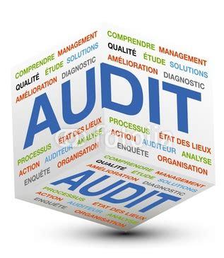 audit intern audit de cagne adwords partner skymmer mathieu