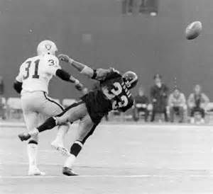 Immaculate reception remembrances