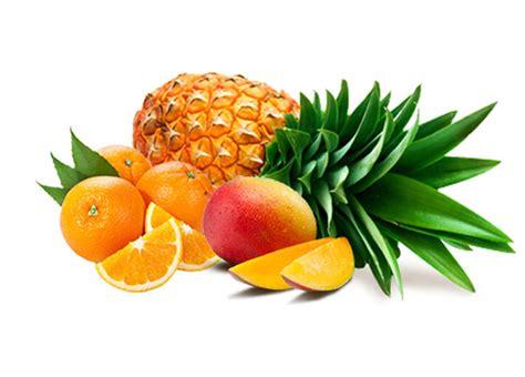 Liquid Premium Tropical House 60ml Mango Pineapple By Ejmi Nic 3mg 파인애플 망고 50vg