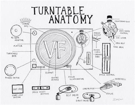 record player parts diagram turntable anatomy an interactive guide to the key parts