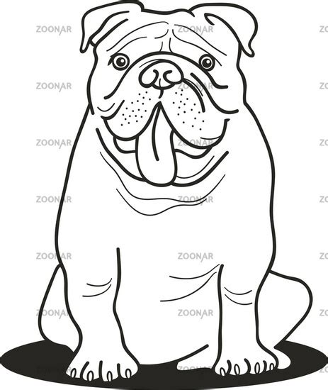 bulldog coloring pages bulldog coloring pages bulldog for coloring book