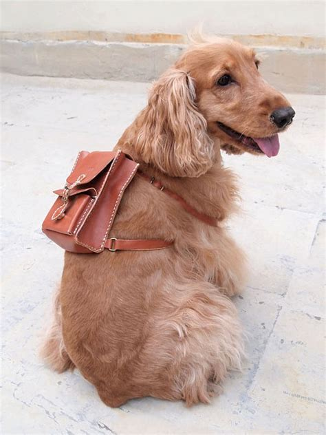 puppy backpack for school back pack to school etsy backpack finds 171 lark crafts