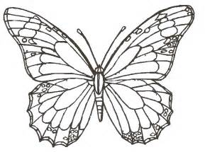 How To Draw Butterfly Drawing Pictures Butterfly Drawing Pictures