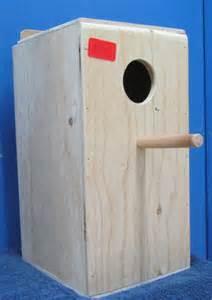 grass parakeet nesting box nest box nest box material