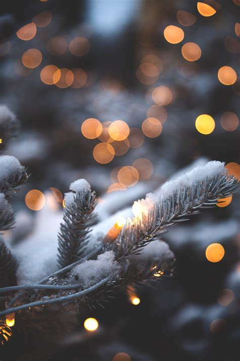 Die 61  Besten Weihnachten Hintergrundbilder Hochformat