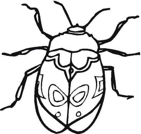 picture to color insects coloring pages printable