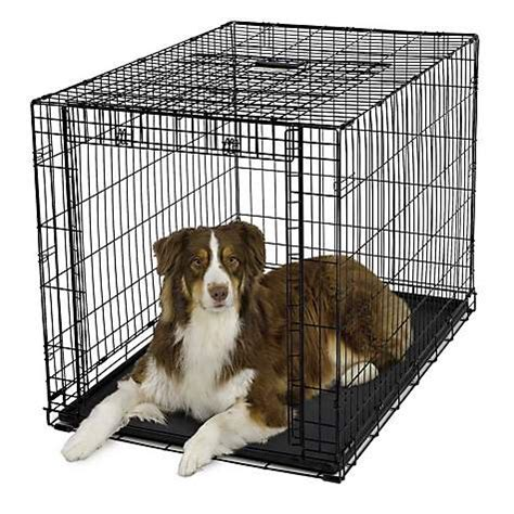 puppy crates petco midwest ovation single door folding crate petco