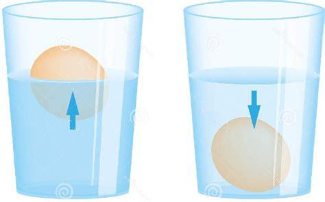Egg Sinks In Water by Float An Egg In Water Urdu