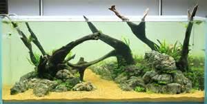 driftwood aqua rebell