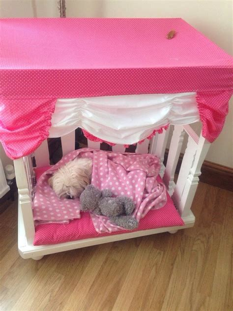 shih tzu bed spoilt shih tzu bed animals