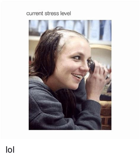 Stress Meme - funny stress level memes of 2017 on me me levels