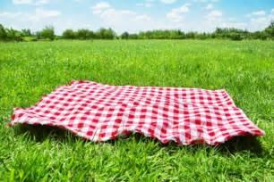 decke rot die picknickdecke frische muster f 252 r fr 246 hliche zeit im