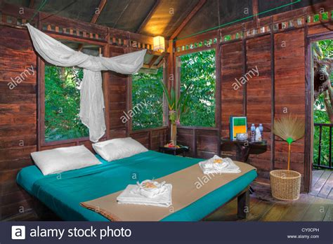our house interiors a tree house interior at our jungle house a lodge in the rainforest stock photo