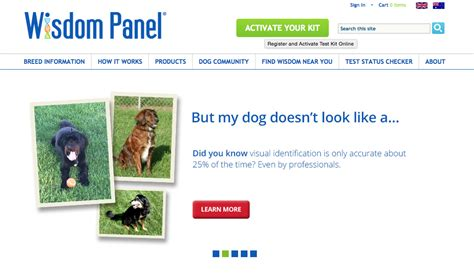 wisdom panel dna true story i gave my a dna test and you can rover