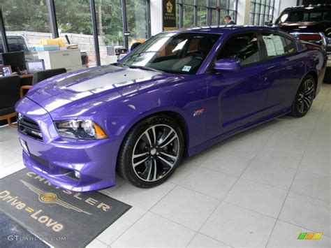 charger bee 2013 2013 plum pearl dodge charger srt8 bee