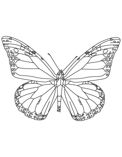 Monarch Butterfly Coloring Pages Coloring Home Monarch Butterfly Coloring Page
