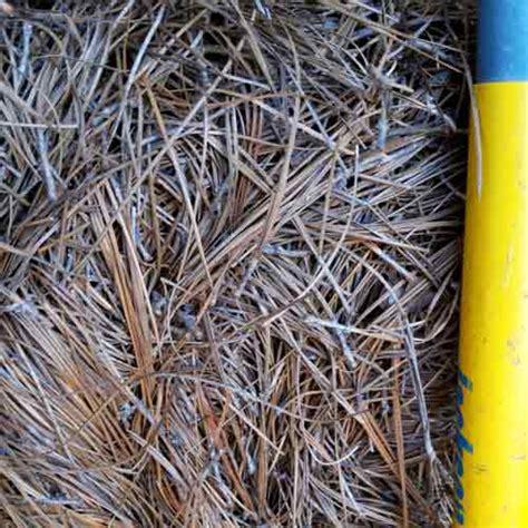 Landscape Supply Fort Mill Landscape Supply Fort Mill 28 Images Yard Works