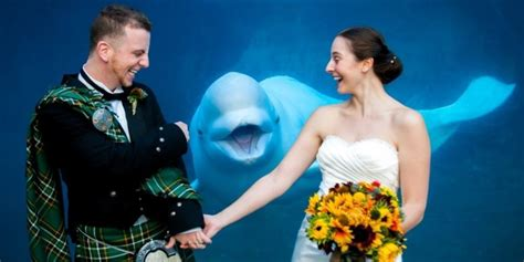 best photobomb pictures the 45 all time best wedding photobombs huffpost