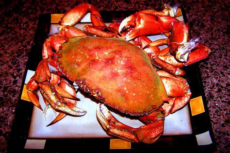 alaskan crab alaskan fishing resorts