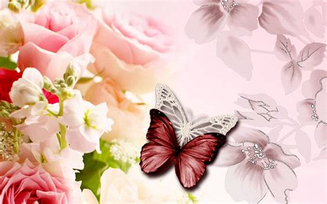 wallpaper for walls wikipedia wallpaper wiki butterfly wallpaper for walls computer pic
